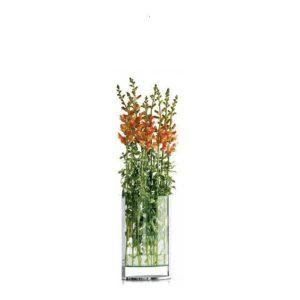Váza 35 cm DECADE - PHILIPPI
